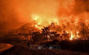 10 thảm họa liên quan khí hậu xảy ra gần đây
