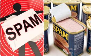 """Đảm bảo bạn chưa biết từ """"Spam"""" (thư rác) có gốc gác là một loại thịt hộp cực ngon, nhưng tại sao?"""