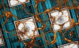 Samsung muốn 'copy và paste' não bộ con người lên chip, và họ đã phát triển được phương pháp làm điều đó