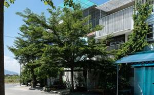 Gia đình 3 thế hệ ở Nha Trang sống trong ngôi nhà 77m2 ẩn mình giữa thiên nhiên, mang ký ức từ vùng cao nguyên về thành phố biển