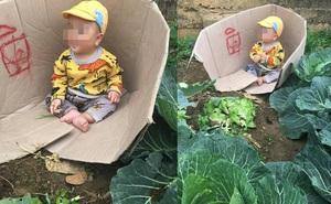 Người mẹ bê thùng các - tông đặc biệt ra vườn bắp cải, điều bất ngờ bên trong khiến tất cả lặng người