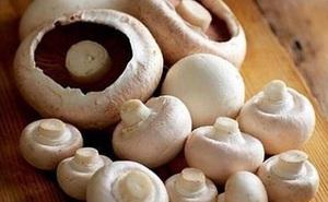 Bí quyết bảo quản các loại nấm để cả tháng vẫn tươi