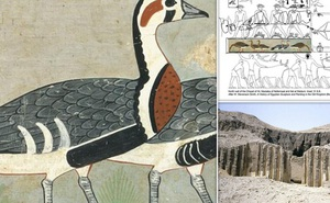 Mona Lisa trong mộ cổ Ai Cập: Sinh vật đã biến mất khỏi Trái Đất
