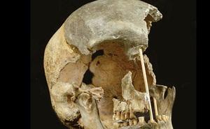 Giới khoa học sửng sốt khi phát hiện DNA cổ xưa nhất trên thế giới