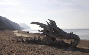 """Những thứ con người """"nhặt"""" được trên bãi biển: Kích thước thứ số 6 gây kinh ngạc"""