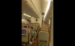 Video: Sốc với con vật bay trong khoang hành khách máy bay khởi hành từ Ấn Độ