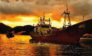 """""""Đề đốc Hải quân VNCH"""" làm đầu bếp trên tàu V630 Hải quân Việt Nam: Chiến lợi phẩm có một không hai!"""