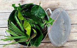 Dùng lá xông hơi, súc miệng nước muối có phòng được Covid-19? Bác sĩ người Việt tại Mỹ tiết lộ câu trả lời