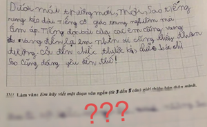 Cô giáo ra đề bài tự giới thiệu bản thân, cậu bé lớp 1 viết 3 dòng ngắn ngủi khiến giáo viên vừa cười vừa tức anh ách