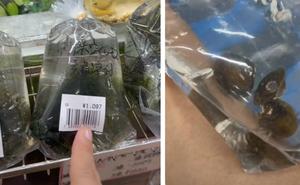 """Những thứ ở Việt Nam chỉ cho gà ăn mà sang Nhật giá cực đắt khiến dân mạng xôn xao: """"Thế này thì nhà mình giàu to rồi""""!"""
