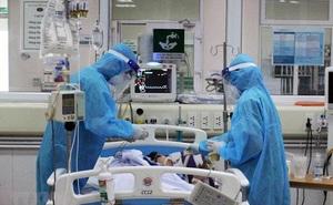 TP HCM: 2.302 bệnh nhân nặng đang thở máy và 16 bệnh nhân can thiệp ECMO