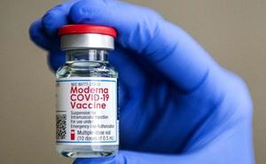 WHO giải đáp 9 thắc mắc của bạn về vắc xin Moderna: Nhóm người nào không nên tiêm?