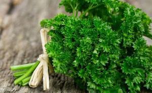 Rau mùi tây – thảo mộc hữu ích cho bệnh nhân sỏi thận
