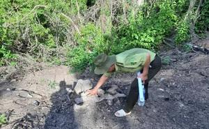 Đi kiểm tra, kiểm lâm Bình Định phát hiện gần 6 ha rừng tự nhiên bị xóa sổ