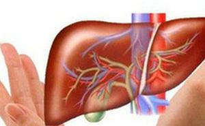 3 cây thuốc có tác dụng tốt với gan