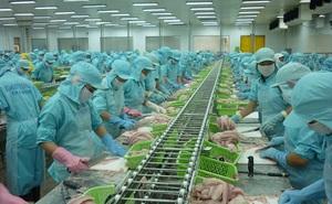 Thành lập Hiệp hội cá tra Việt Nam