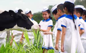 Vươn cao Việt Nam: Lâu lắm rồi, giới trẻ Việt mới lại nắm chặt tay nhau như thế!