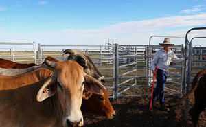 Úc cho rằng ngăn Trung Quốc mua đất nông nghiệp là đúng