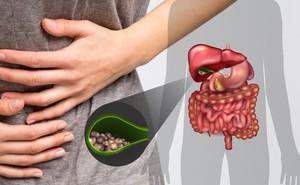 Cắt túi mật ảnh hưởng thế nào đến sức khỏe và hệ tiêu hóa của bạn?