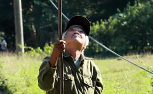 Căng tai, dõi mắt đi săn ong rừng