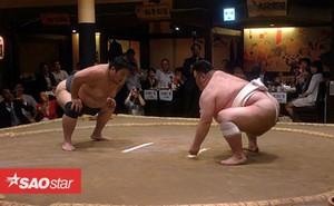 Nhà hàng sumo ở Nhật Bản, nơi thực khách thách đấu các võ sĩ