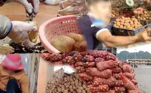 VIDEO điều tra: Đường đi nông sản Trung Quốc nhái Đà Lạt