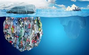 Rùng mình nghĩ về ngày rác thải nhựa nhiều hơn cá biển!