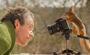 Theo chân loài sóc suốt 6 năm, nhiếp ảnh gia tạo nên bộ hình cực nghệ thuật về đời sống của chúng
