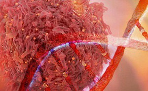 Người mang những gen này phải cẩn thận vì có nguy cơ cao bị kích hoạt tế bào ung thư