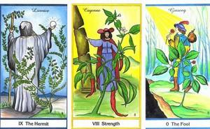 Rút 1 lá bài Tarot để biết may mắn và cơ hội nào sẽ ập đến với bạn trong tuần mới