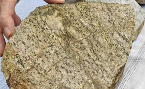 Nhật Bản: Phát hiện tảng đá có niên đại 2,5 tỉ năm