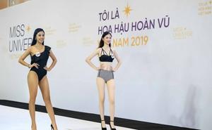 Dàn thí sinh vòng sơ khảo phía Bắc cuộc thi Hoa hậu Hoàn vũ Việt Nam 2019 diện bikini trình diễn vô cùng tự tin
