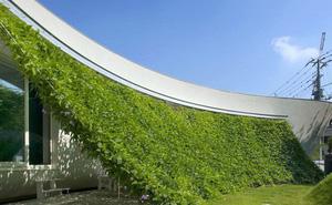 Ngôi nhà vườn hình thuyền độc đáo với điểm nhấn từ giàn cây leo xanh tươi mát mắt ở Nhật Bản