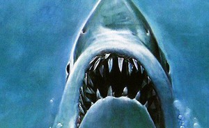 Bị cá mập xơi tái khi đang quay phim dưới nước, iPhone XS vẫn sống sót thần kỳ