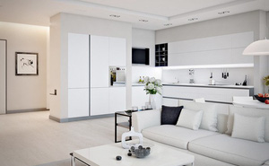 Mẫu căn hộ đẹp có phòng khách liền kề nhà bếp