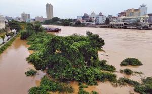 Mưa lớn gây ngập lụt TP Móng Cái, một người mất tích