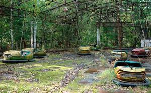 Tại sao thảm họa nguyên tử Chernobyl không giết chết tất cả các loài thực vật