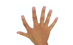 Các nhà khoa học phát hiện rằng việc có sáu ngón tay có thể đem lại nhiều lợi ích trong cuộc sống