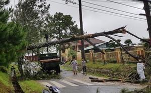 Lũ quét, lốc xoáy nhiều hộ dân ở Lâm Đồng phải di dời