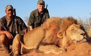 """""""Nên hợp pháp săn thú hoang dã"""" - nghiên cứu từ 130 chuyên gia quốc tế gây tranh cãi cực mạnh, tưởng vô lý nhưng lại cực kỳ đáng suy ngẫm"""