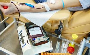 Thông tin thú vị về nhóm máu O không phải ai cũng biết