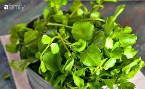 Thứ rau được ưa chuộng vào mùa đông bởi thơm ngon, siêu bổ máu nhưng tuyệt đối đừng quên những lưu ý quan trọng này khi ăn