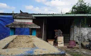 Ớn lạnh khu dân cư 'sống chung với hàng nghìn người chết' ở Đà Nẵng