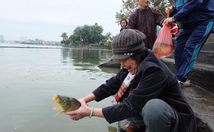 Thả cá chép ngày 23 tháng Chạp ở đâu Hà Nội?