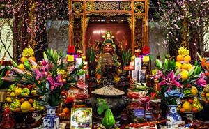 Ngày Tết chưng hoa gì để may mắn cả năm? Nên tránh hoa gì?