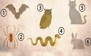 Muốn biết có thành công hay không, chỉ cần chọn một trong những con vật dưới đây