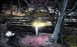 Thiên nhiên kỳ lạ qua đôi mắt của người dân 'Đảo Mù màu': Rừng màu hồng, biển màu xám