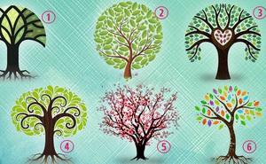 Chọn lấy một cây đời và khám phá những ưu điểm vượt trội của bản thân mình