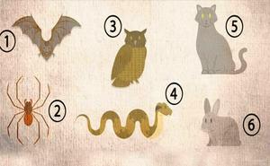 Bạn hãy chọn con vật tượng trưng cho tâm tính mình: Nếu chọn số 3, bạn rất khôn ngoan!