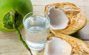 Chữa gút từ trầu không, nước dừa
